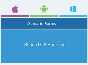 Cross-platform Native Mobile App Development using Xamarin Forms