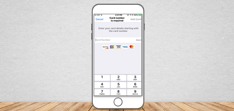 iOS screen for payment gateway app
